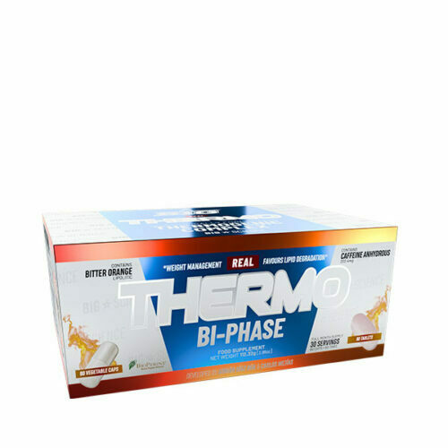 REAL_THERMO_BIPHASE_30SERV_BIG